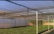 Tela Sombrite 50% 4x50 M Ráfia Solpack - Imagem 4