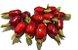 Muda Cereja do Cerrado Vermelha ( Eugenia calycina ) - Imagem 1