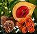 Muda Noz-Moscada (Myristica fragans) - Imagem 1