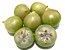 MUDA JABUTICABA BRANCA ( Plinia ( Myrciaria ) aureana  - Imagem 1