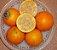 MUDA NARANJILLA ou LULO ( Solanum quitoense ) Para vaso - Imagem 2