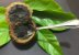 MUDA PURUÍ GRAÚDO ou MARMELADA de BEZERRO ( Alibertia edulis ) MUITO DOCE - Imagem 4