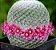 Muda Cacto Mammillaria hahniana Pote 3 - Imagem 1
