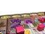 Kit Dashboard para Terra Mystica - Imagem 2