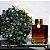 Difusor de Ambiente Ambar - 100 ml - Varias Essências - Imagem 1