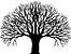 Adesivo de Parede Floral Árvore 08 - Imagem 1
