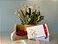 Kit Voucher Shiatsu 60' com Box de Flores e Almofada Para Descanso dos Olhos - Imagem 3