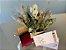 Kit Voucher Massagem Relaxante 60' com Box de Flores e Almofada Para Descanso dos Olhos - Imagem 4