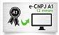 E-CNPJ A1 - CERTIFICADO 12 MESES - Imagem 1