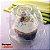 G 685 Embalagem para Cupcake Cristal PET - GALVANOTEK - Imagem 2