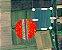 Drone Dji Phantom 4 Multispectral + D-RTK 2 Mobile Station Combo - Imagem 10