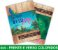 5.000 PANFLETOS 10x15cm - Frente e Verso Coloridos - 4x4 - Papel Couche 115g - Imagem 2