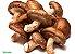 Cogumelo Shitake Bandeja 200g (Chegada 26.10.21) - Imagem 1