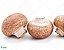Cogumelo Paris Bandeja 200g (Chegada 26.10.21) - Imagem 1