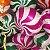Balão Metalizado Pirulito - Imagem 2