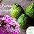 Essência Bergamota e Verbena 100g - Imagem 1
