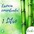 Frasco Econômico Essência Bamboo MM 1 Litro - Imagem 1