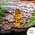 Essência Cascas e Folhas 100g - Imagem 1