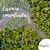 Essência Amazônia 100g - Imagem 1