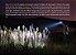 Lanterna Recarregável Fenix C6 V2.0 900 Lumens - Imagem 8