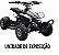 Mini Quadriciclo 49cc - DSR MODELO DE EXPOSIÇÃO - Imagem 1