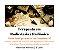 Curso Semi Presencial Terapeuta em Radiestesia e Radiônica - Imagem 1