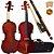 Violino Eagle 4/4 VE441 - Imagem 1