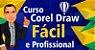 CorelDRAW Fácil e Profissional - Imagem 1