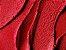 Batom MAC Ruby Woo Matte Lipstick - Imagem 2