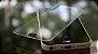 """PELICULA VIDRO IPHONE 7G (4.7"""")  DIANTEIRA COM BORDA (CURVA) - Imagem 2"""