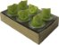 Vela Aromática com 6 unidades (Limão) - Imagem 1