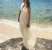 Vestido Al mare (PP) - Priscila Pitta NOVO - Imagem 2