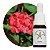 Floral de Saint Germain Gerânio - Essência Estoque 10mL - Imagem 1