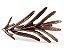 Kit com 2 anéis de guardanapo - Alecrim - Imagem 1