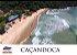 Aluguel de Lancha  Pacote Full 2 - Pulso x Ilha do Tamanduá - Imagem 3