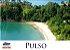 Aluguel de Lancha  Pacote Full 2 - Pulso x Ilha do Tamanduá - Imagem 2