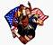 Enjoystick KOF Team USA - Imagem 1