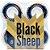 Roda Black Sheep Importada Gold 60mm 83B ( jogo 4 rodas ) - Imagem 3