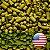 LÚPULO US SANTIAM PELLET T-90 SAFRA 2018 - Imagem 1