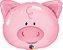 Porco Brincalhão - Imagem 1