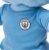 Mascote do Manchester City Moonchester  - Imagem 3
