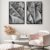 Conjunto com 02 quadros decorativos Folhas Bananeira - Imagem 1