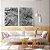 Conjunto com 02 quadros decorativos Galhos em Preto e Branco - Imagem 2