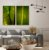 Conjunto com 02 quadros decorativos Folhas Tropicais - Imagem 3
