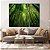 Conjunto com 03 quadros decorativos Floresta de Bambu - Imagem 2