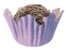 Forminha de Papel N° 4 Recortada Lilás com 100 un. Cod. 3275 Mago Rizzo Confeitaria - Imagem 1