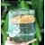 Blister (Forma para Panetone) Transparente 500g -  1und - Galvanoteck Rizzo Confeitaria - Imagem 1