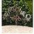 Topo de Bolo Feliz Ano Novo Espelhado Prata Sonho Fino Rizzo Confeitaria - Imagem 1