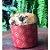 Forma para Panetone Decorada 500 g com 12 un. Ecopack Rizzo Confeitaria - Imagem 2