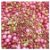 Sprinkles Rose Gold 60g - Morello - Rizzo Confeitaria - Imagem 1
